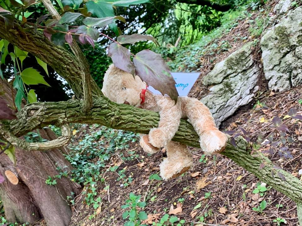 Teddies resting in the Garden - Did you find them???