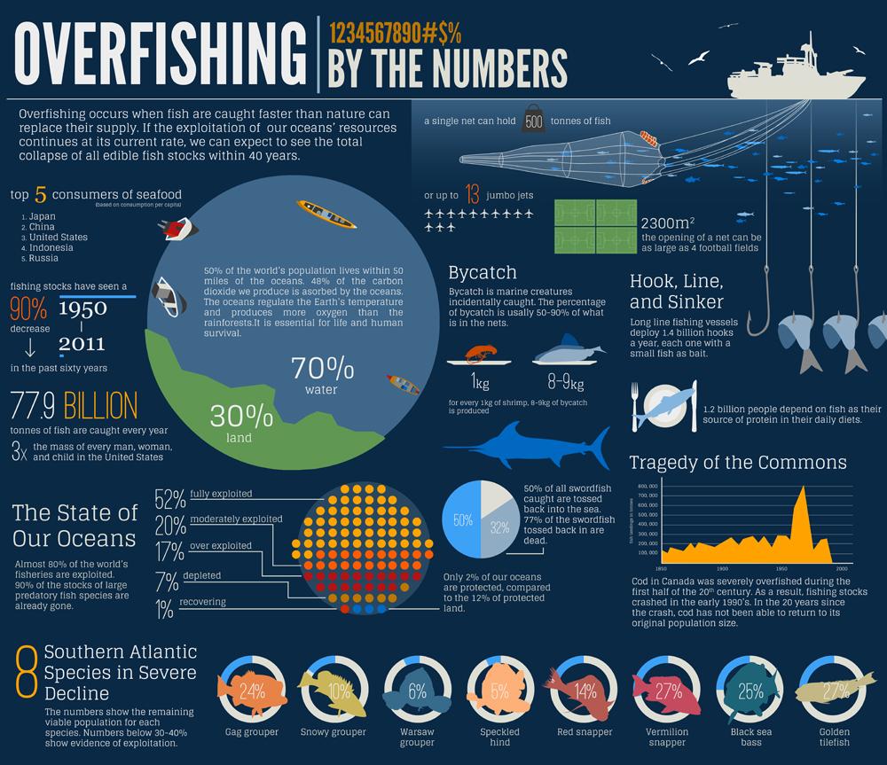 overfishing_infographic.jpg