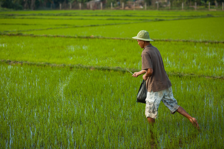 Francois Marclay_Vietnam_17.jpg