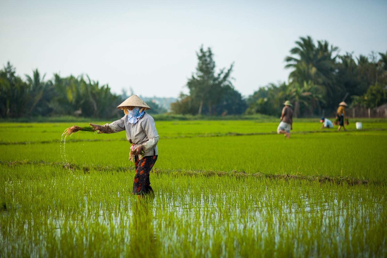 Francois Marclay_Vietnam_19.jpg
