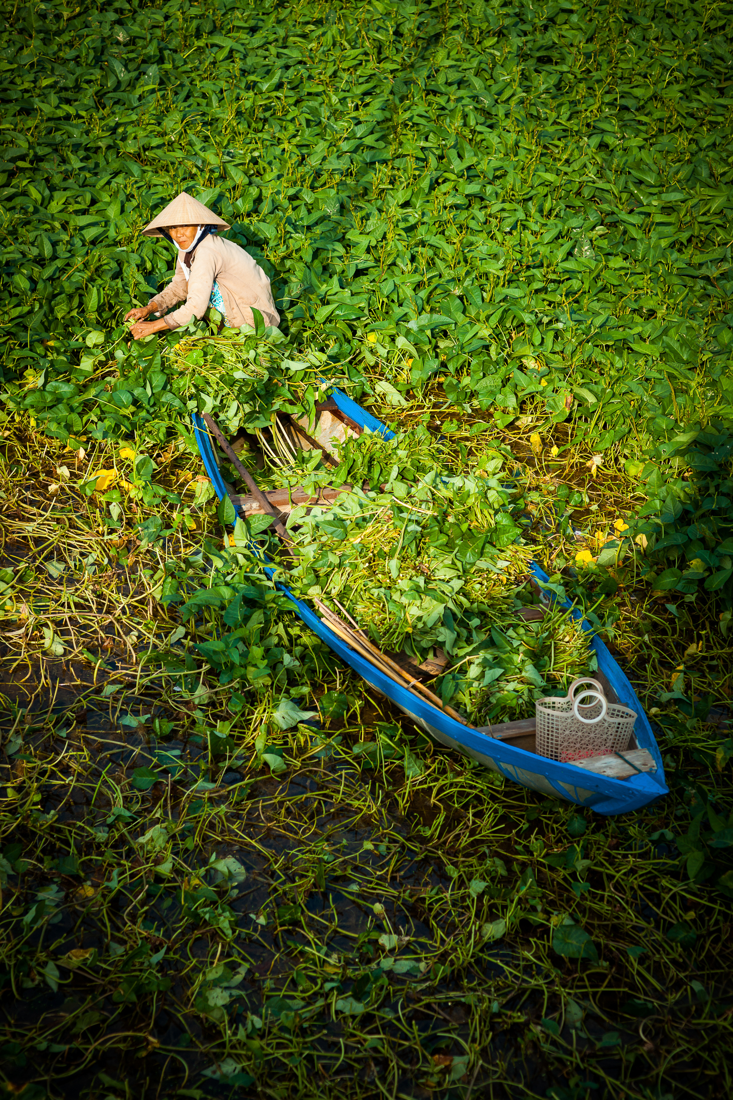 Francois Marclay_Vietnam_20.jpg