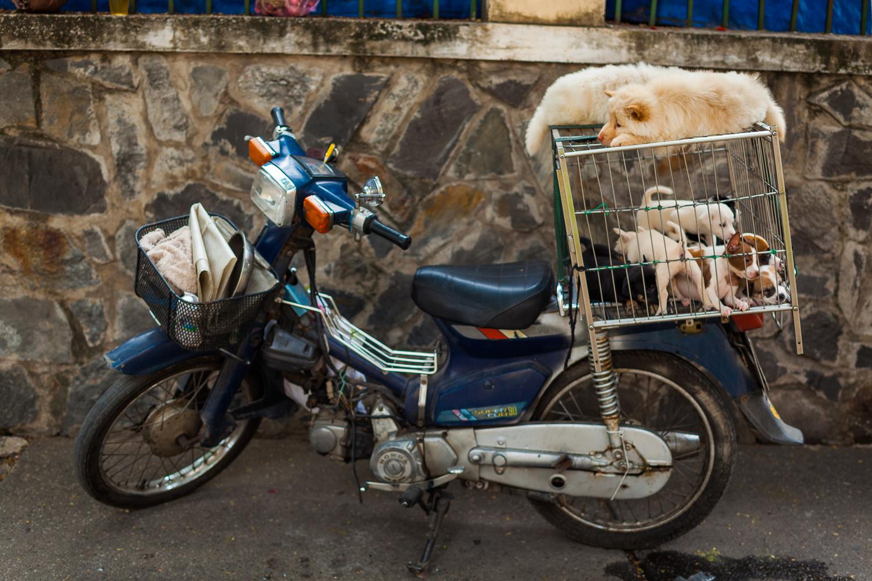 Francois Marclay_Vietnam_36.jpg