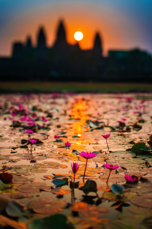 Francois Marclay_Cambodia_48.jpg