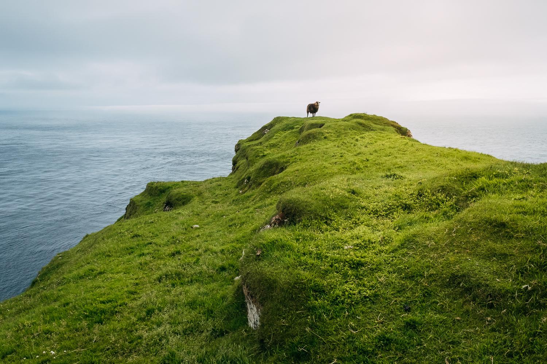 Francois Marclay_Faroe Islands_24.jpg