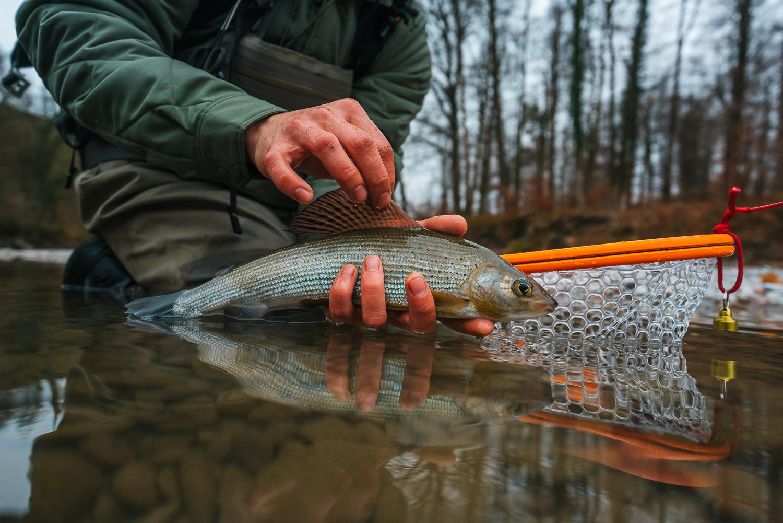 Francois_flyfishing_3.jpg
