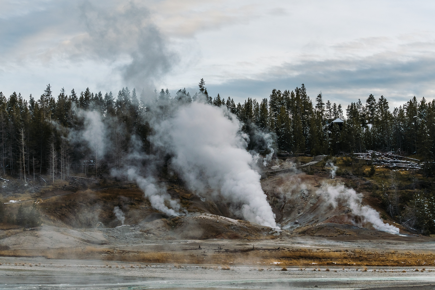 Francois Marclay_Yellowstone_25.jpg
