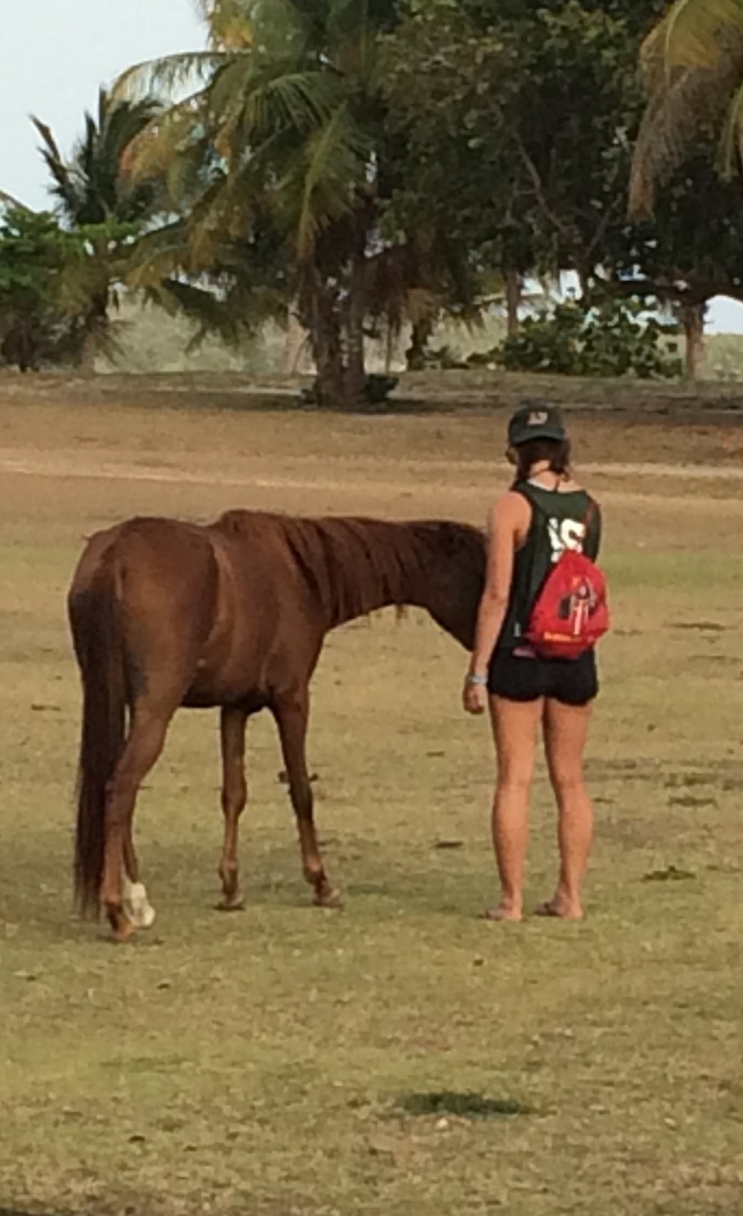 Caroline Myers: Caroline is attending pre-veterinary program in NY. In her free time she enjoys playing volleyball and working at an equine facility.