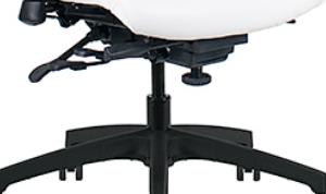 Ergonomic -  Click for Adjustments