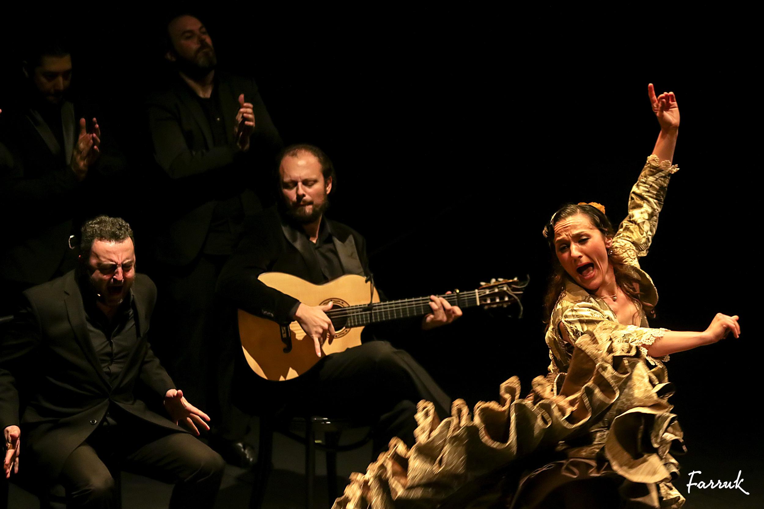 Concha Jareño, premio nacional de flamenco, bailaora Madrid, Festival Flamenco de Albuquerque.jpg