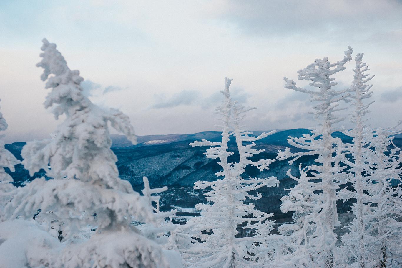 snow-covered-trees-engagement-idena-photographer-killington-vermont.jpg