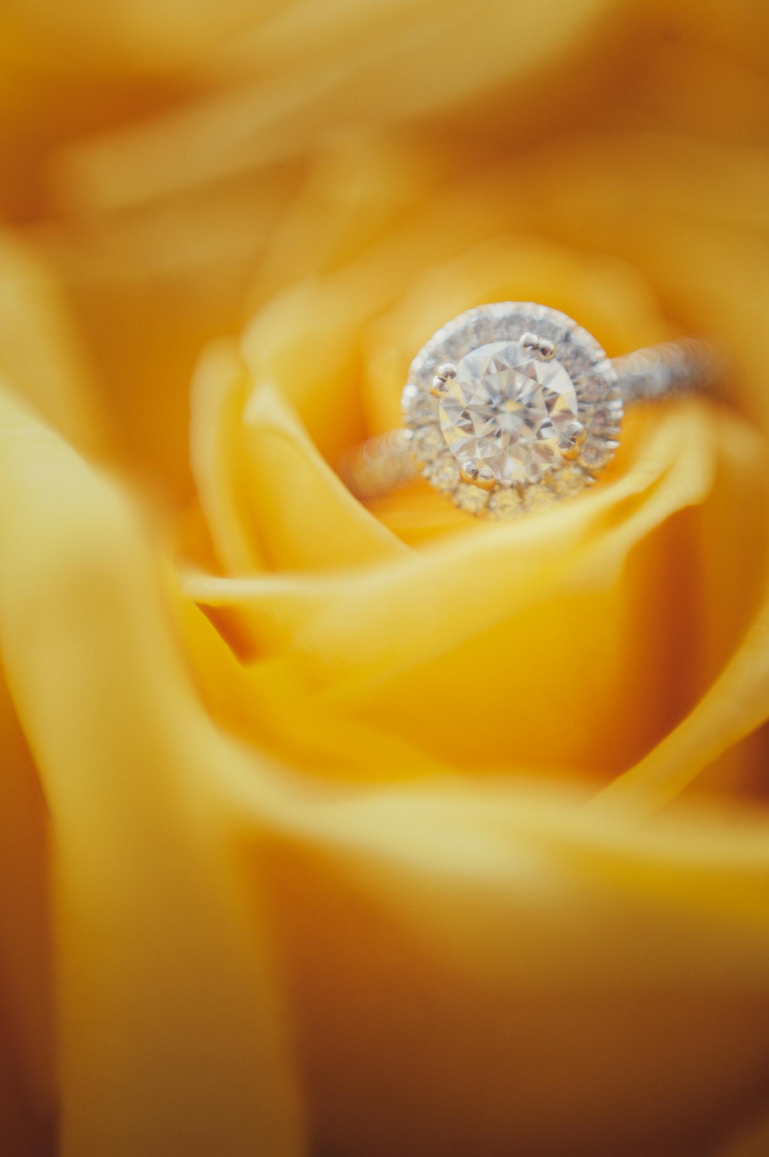 Weddings-Websized-10.jpg