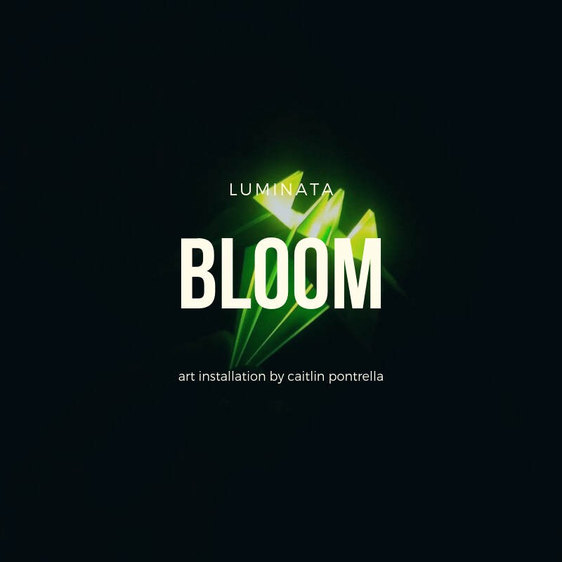 bloom.png