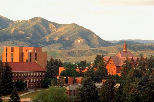 Image credit: Montana State University