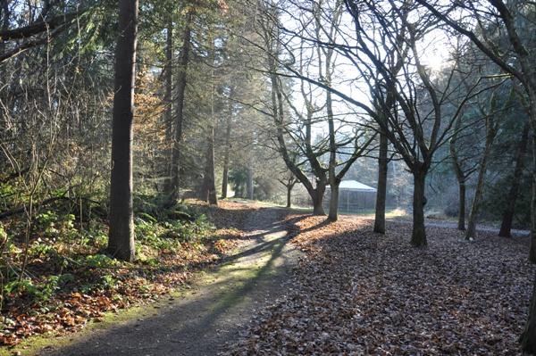 Camp Long Trail.jpg