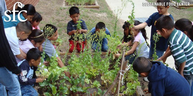 Latino children gardening.jpg