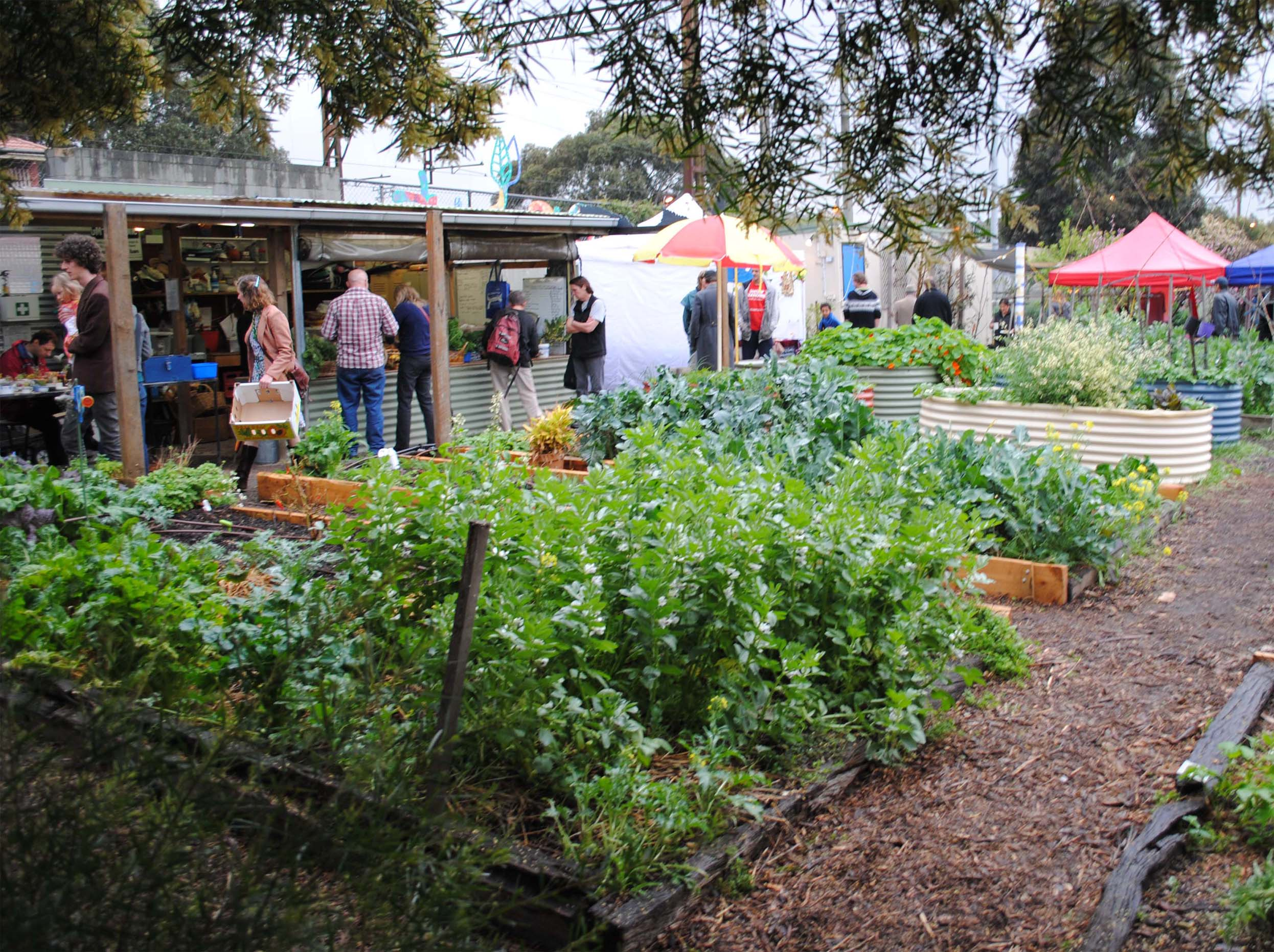 Market Garden_UrbanGardenGuerilla_Sprout Programs_sm.jpg