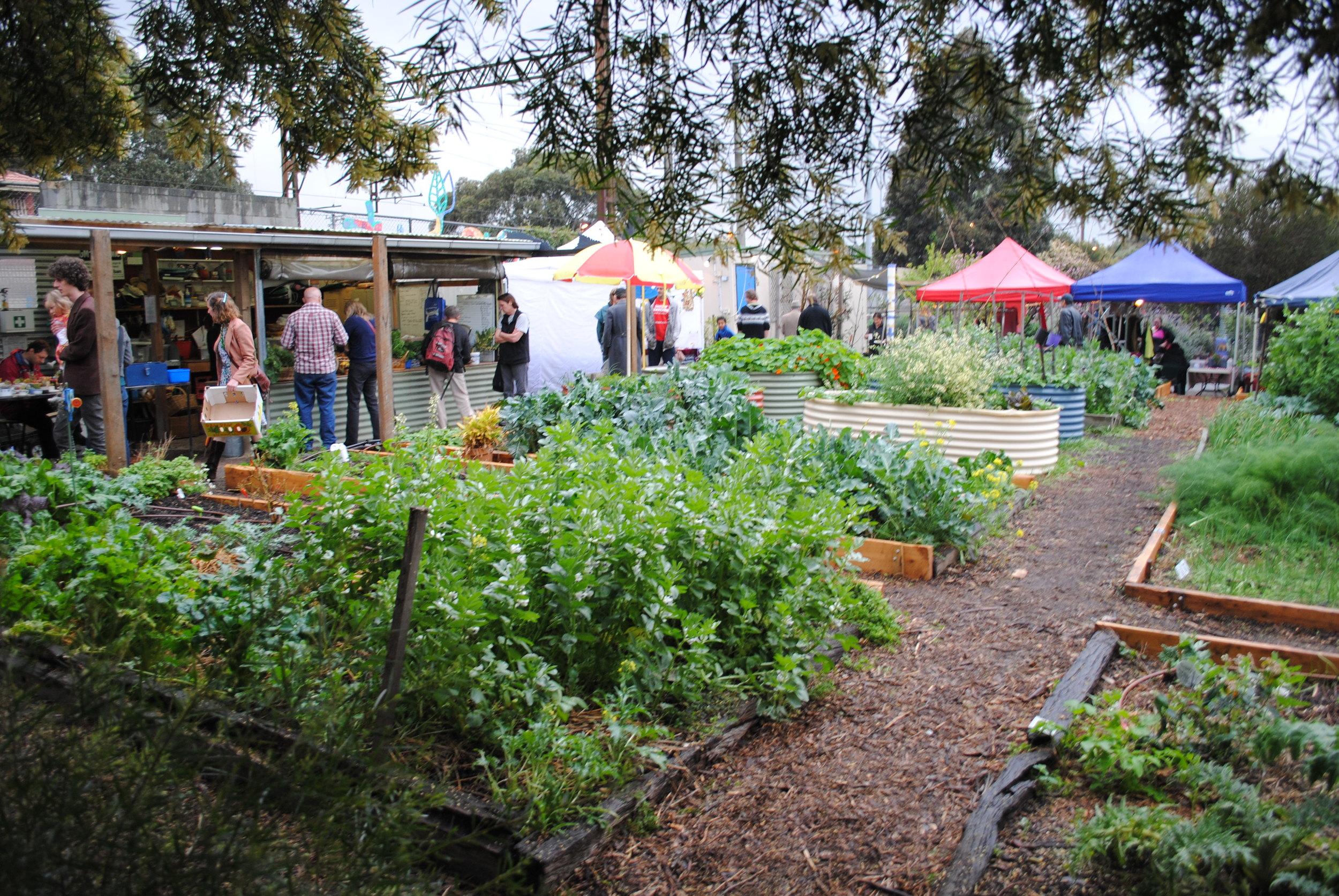 Market Garden_UrbanGardenGuerilla_Sprout Programs.jpg