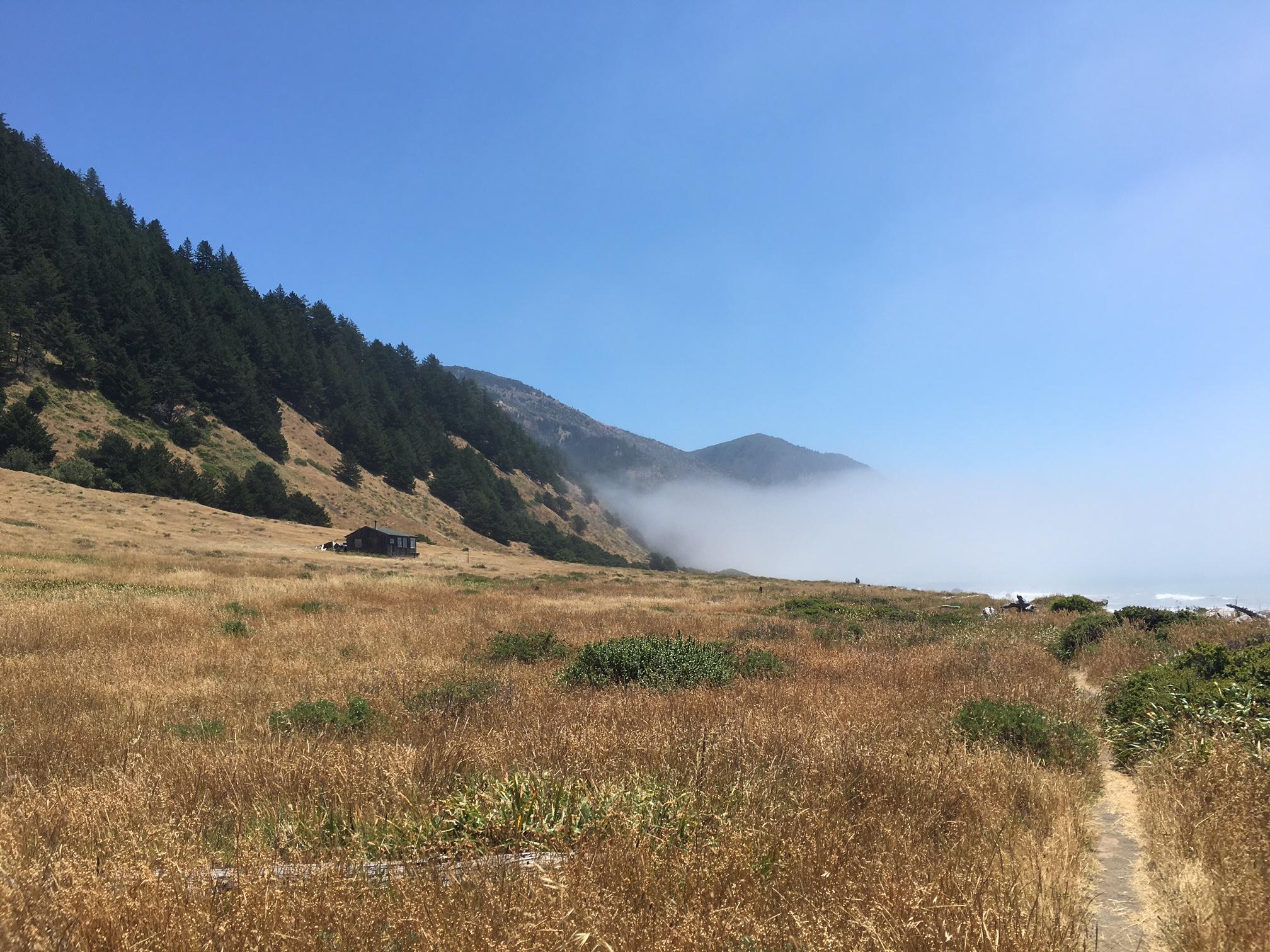 Sunny expanses leading into foggy respites.