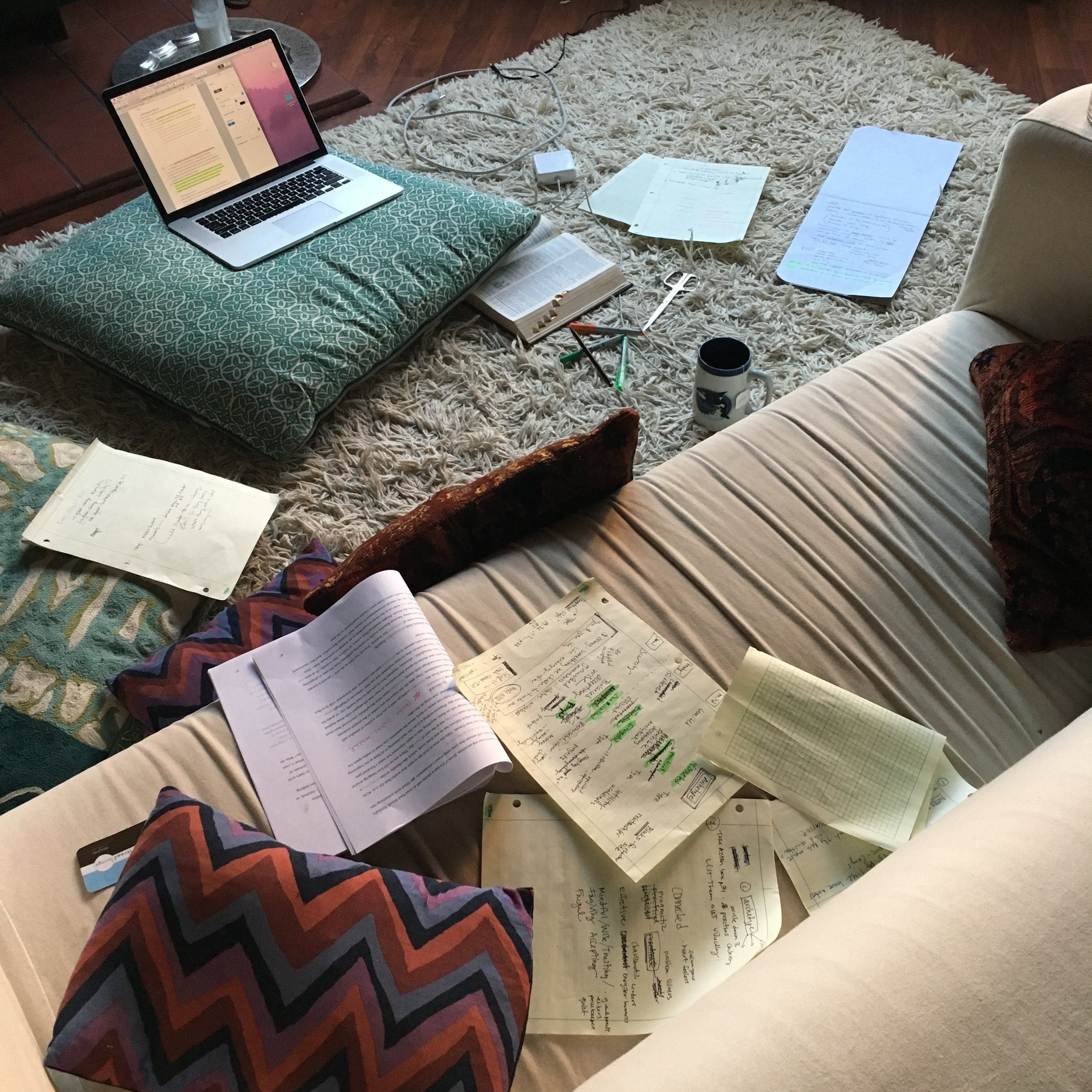 A common scene in my living room over the course of writing the book.  Vital to my success: alone time!