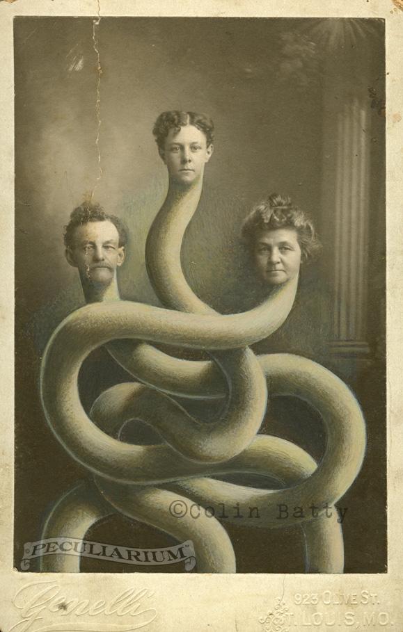 3 headed snake_sm.jpg