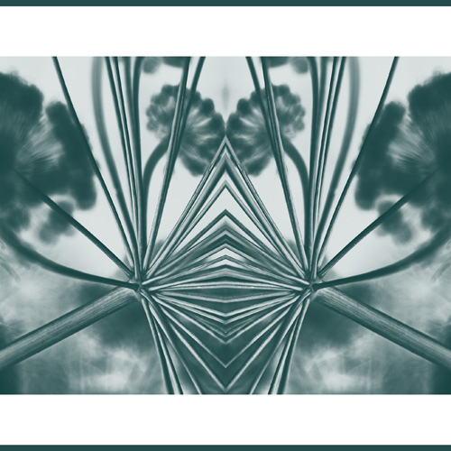 fennel abstract teal 2 2 s.jpg