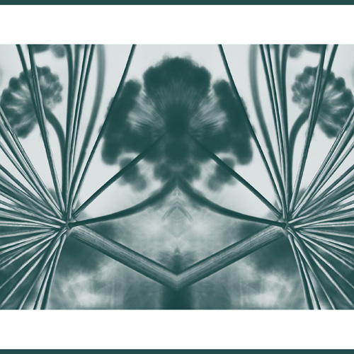 fennel abstract teal 3 2 s.jpg