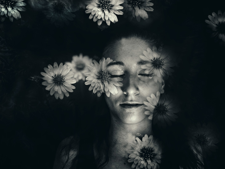 emme dreams edit dandelions dark s.jpg