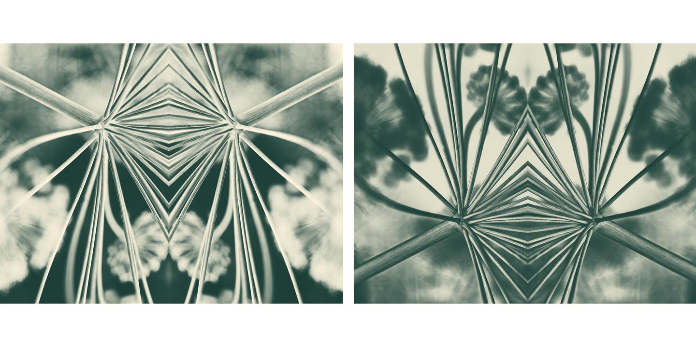 abstract set 1.jpg