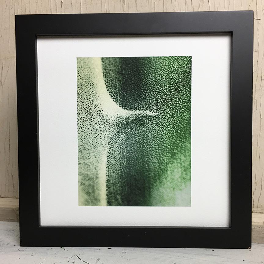 agave fine art photography print.jpg