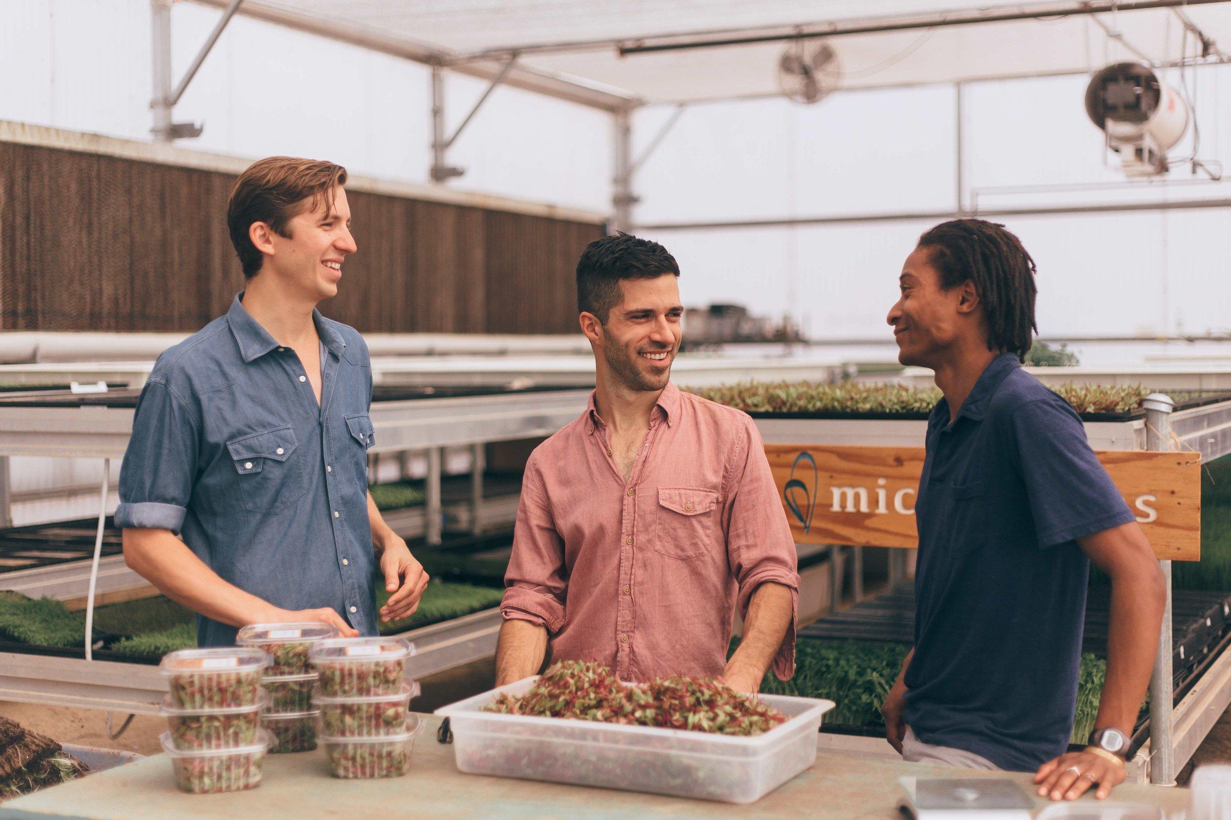 Arizona Microgreens group.jpg