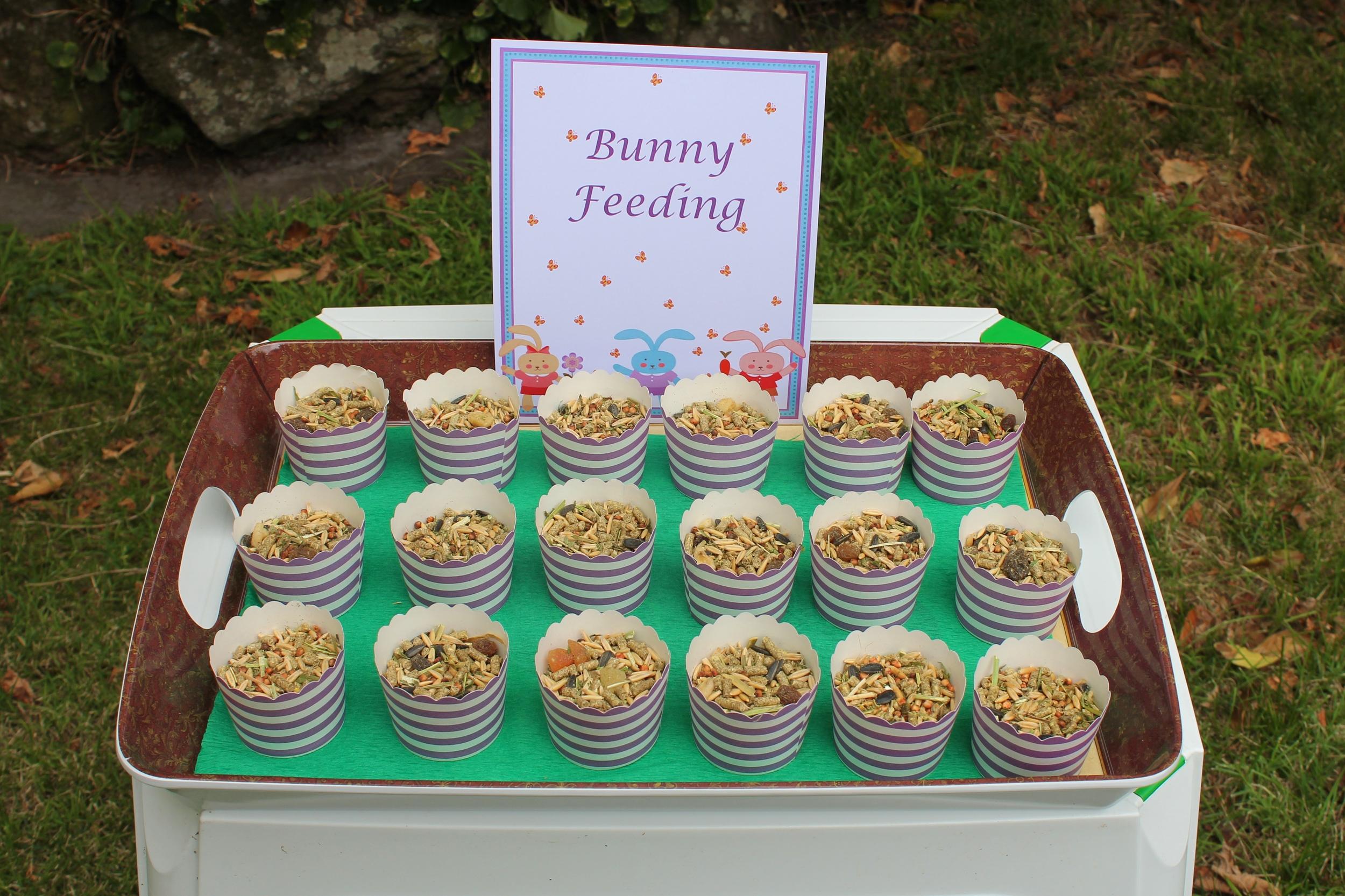 Bunny Party - Bunny Feeding Station