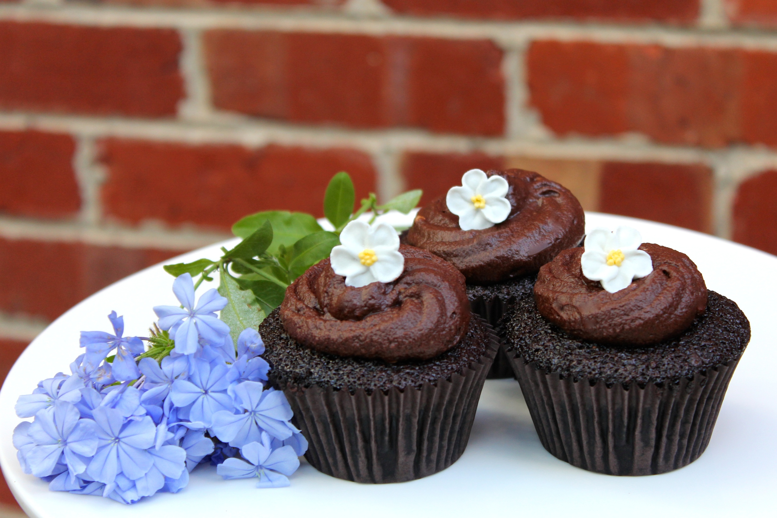 Chocolate Cupcakes with Chocolate Buttercream icing