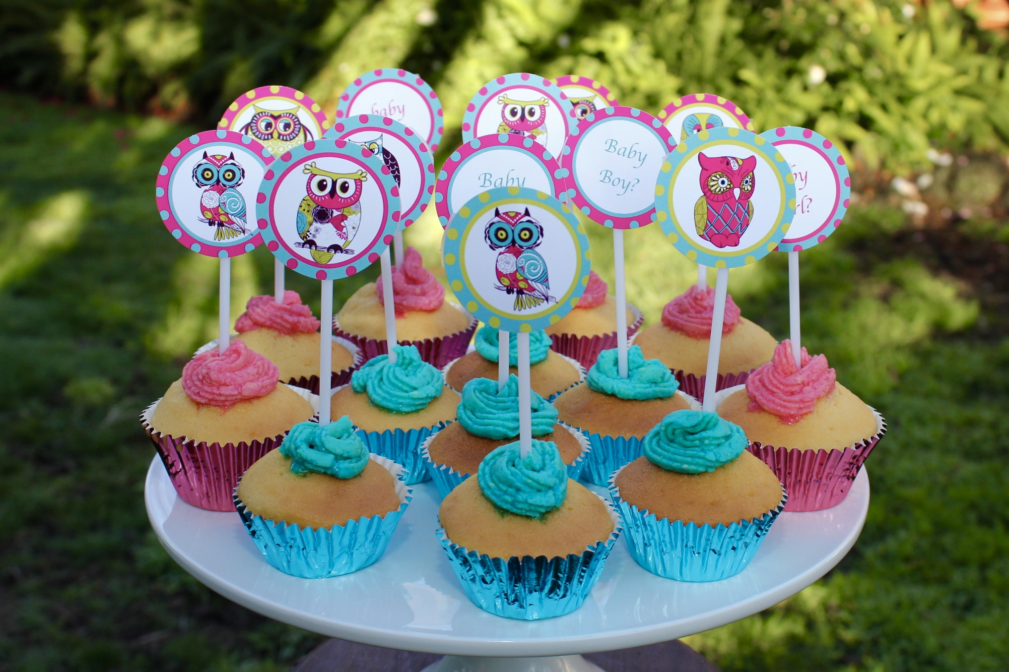 Owl Baby Shower Cup Cakes