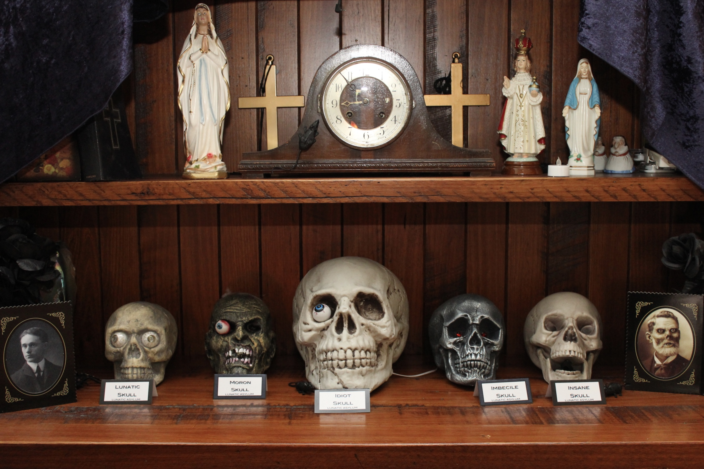 Halloween Asylum Skull Display