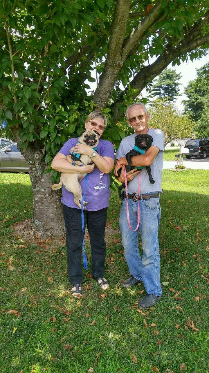 CISSY AND WALLY - ADOPTED JULY 2017