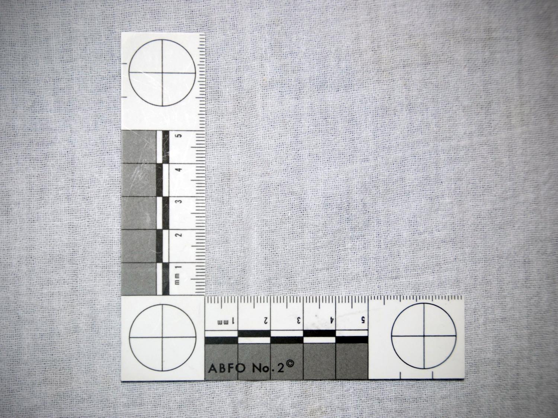 ABFO No. 2 scaled ruler