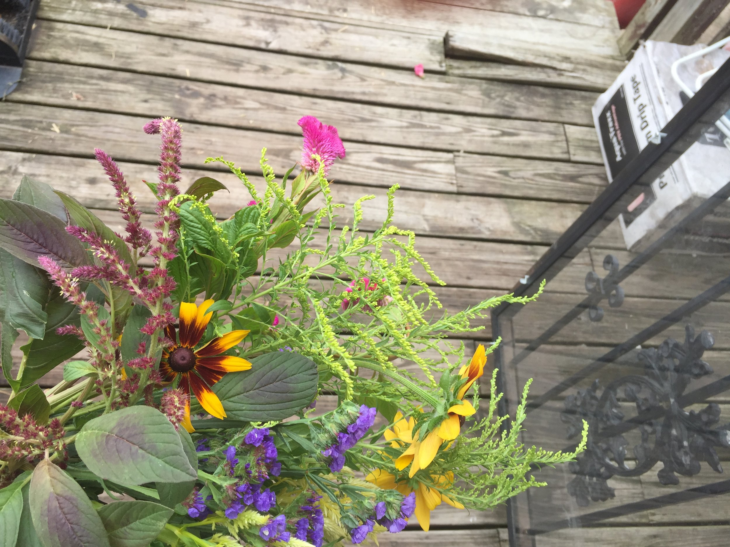 Amaranth, celosia, young goldenrod (a great emcee name waiting for someone), and statice.