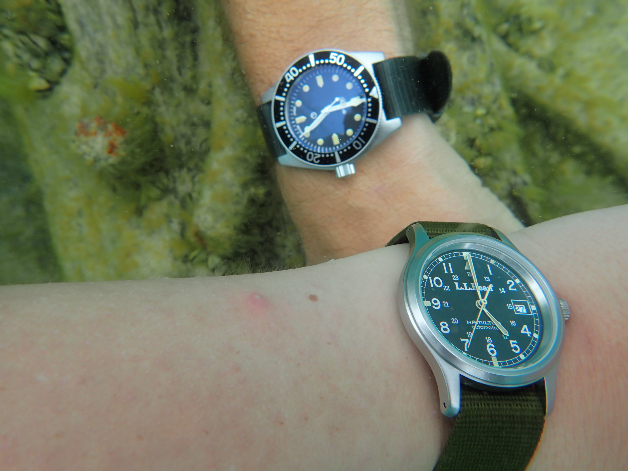 My expedition partner wears his Hamilton 9721, modified with flat sapphire crystal and large crown.