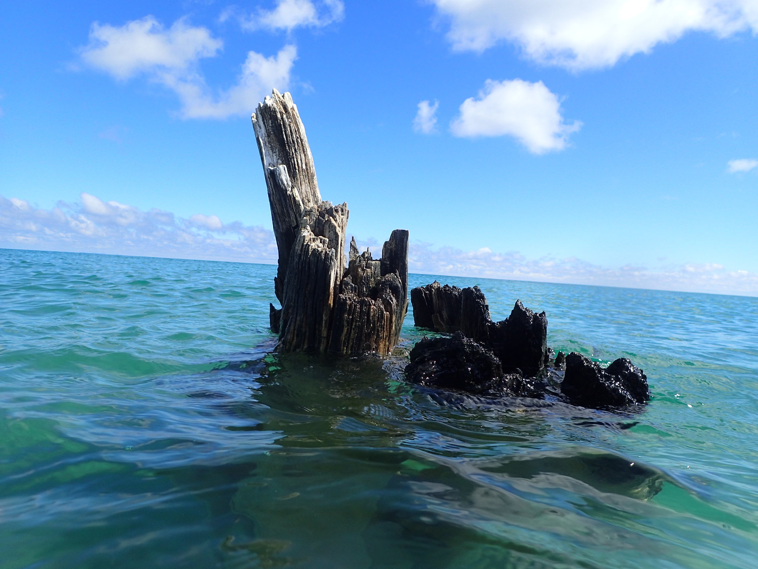 The footings of an abandoned pier still stick up above the surface.