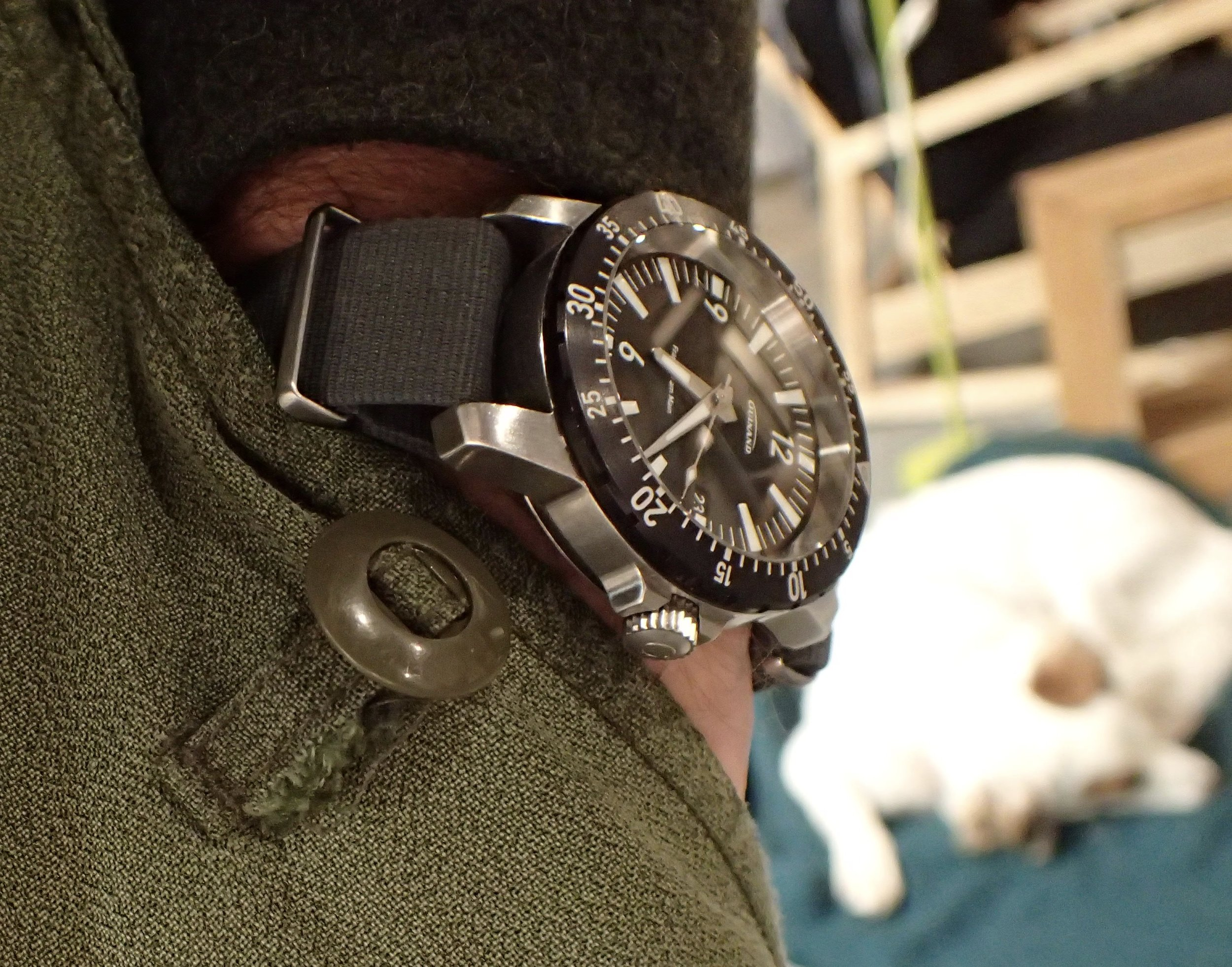 Like a good Collie mongrel, the AS Flieger will seep into the corners of your life.