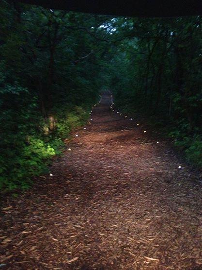 A sacred path beckons you...