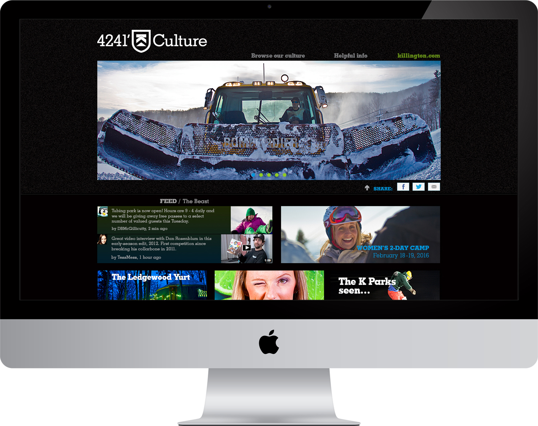 4241' Magazine Micro Site Design