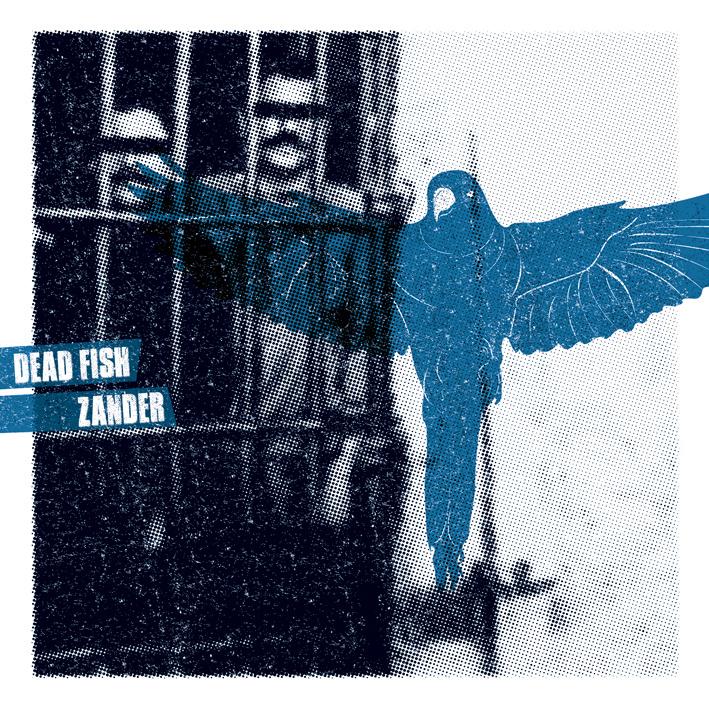Dead Fish // Zander      Split