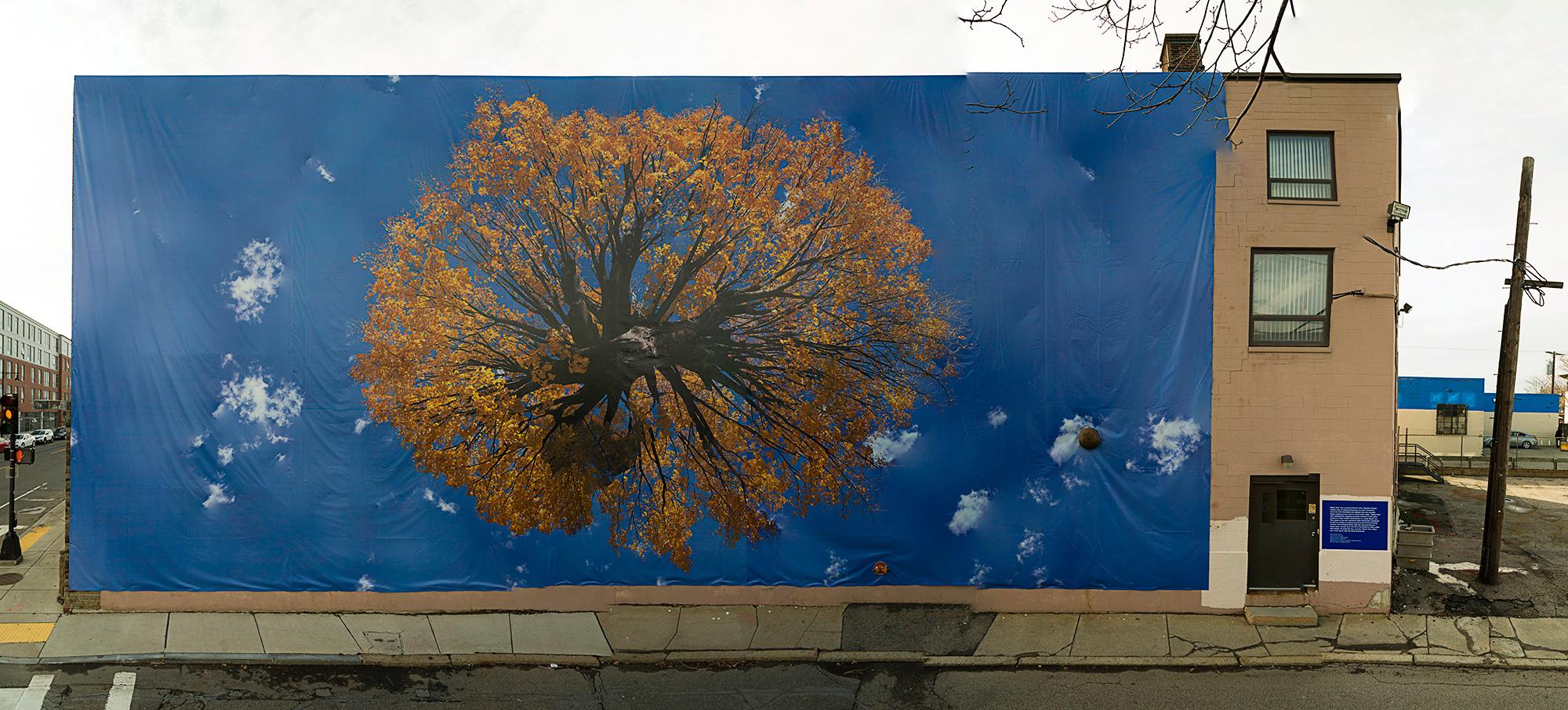 Yellow Tree Mural