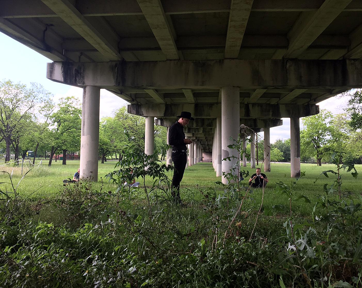 Basking in reverberations under the bridge.