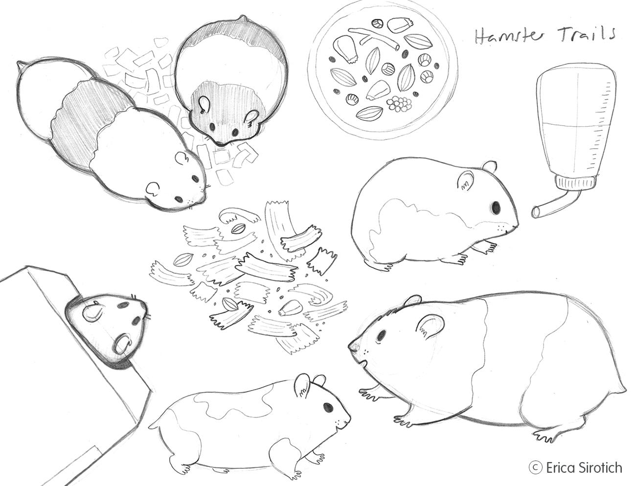 HamsterStudies.jpg