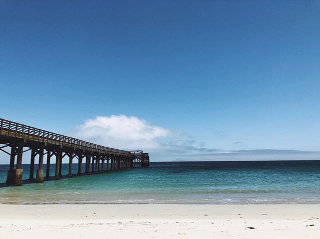 When all you've got to distract you is a lone pier and canned wine, that's summerin'. | #getouttadodge