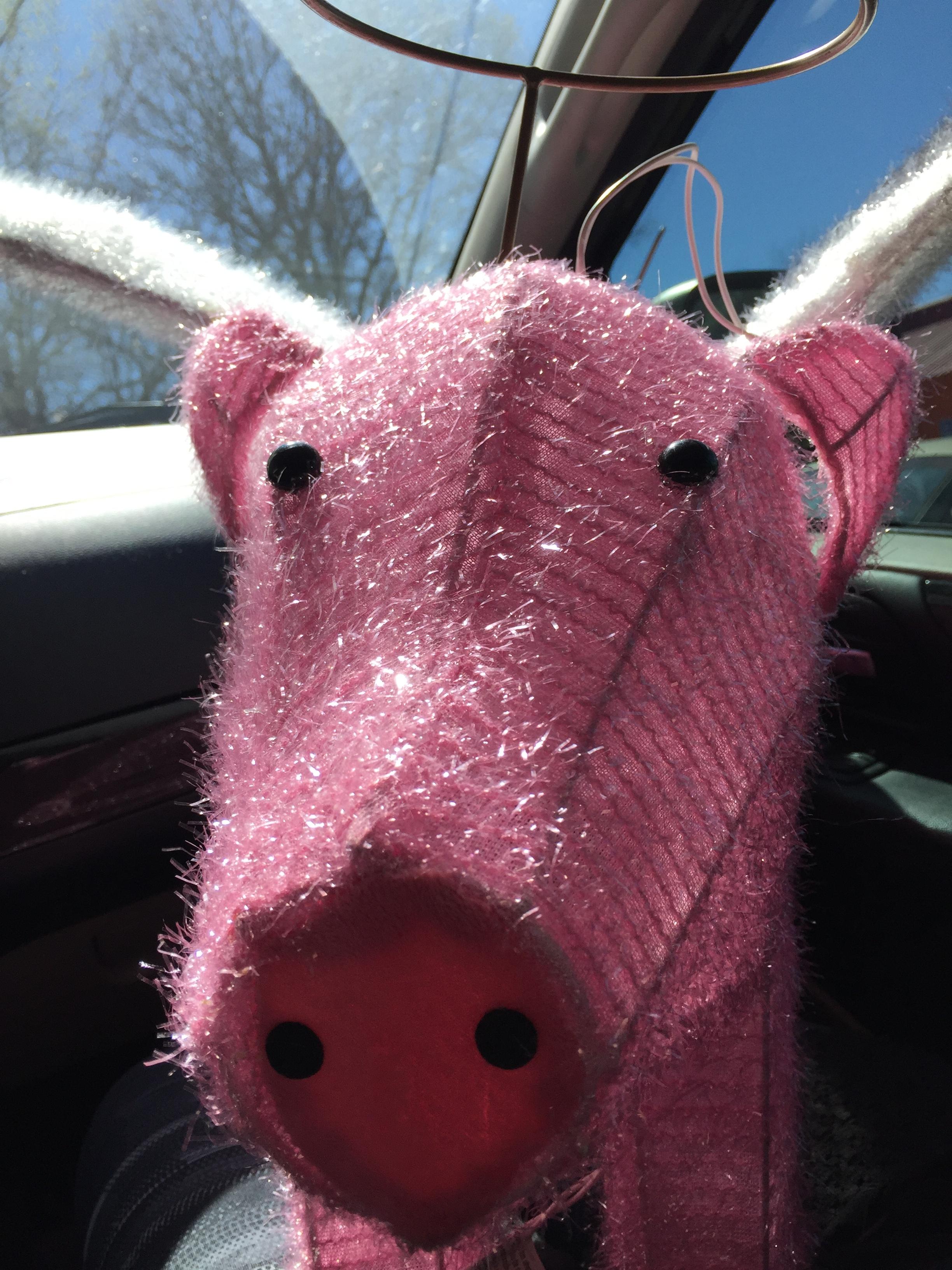 My New Guardian Piglet at Lula B's