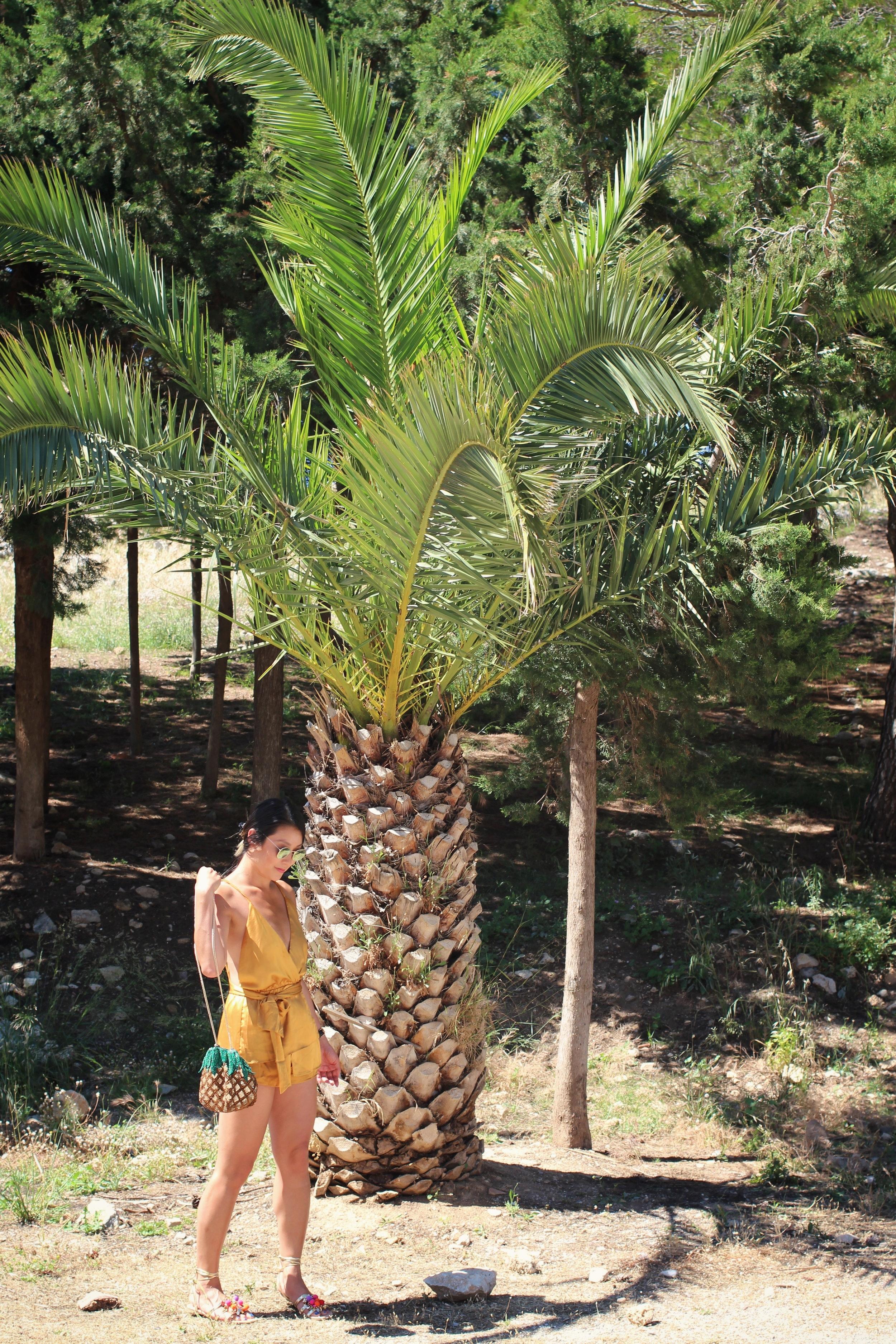 goldoromper_pineapplebag_crete.jpg