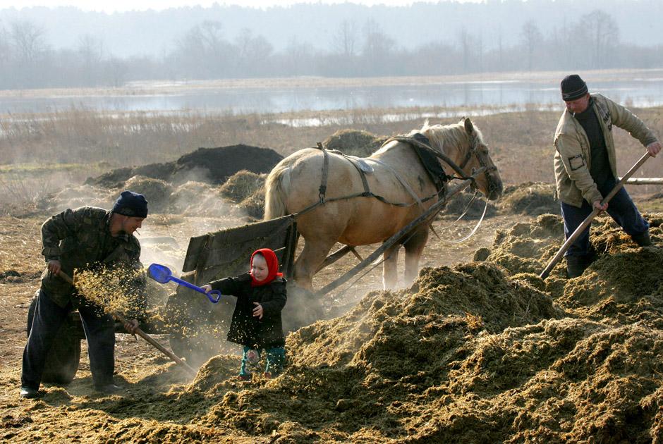 Pesotsjnoje, 95 km van Minsk, 2009